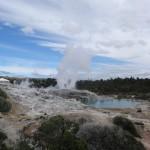 Un des geysers de Rotorua.