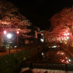 Promenade nocturne à la lueur des lampions.