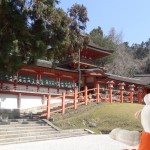 Kasuga, un temple shintô de Nara.