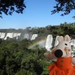 Les chutes d'Iguazu sont vraiment majestueuses.