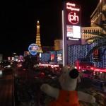 Las Vegas et ses lumières.