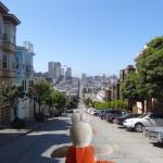 A San Francisco, comme dans toutes les villes du pays, les rues sont rectilignes.