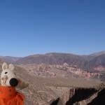 Le nord-ouest de l'Argentine est désertique.