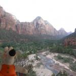 La parc national de Zion couvre une superficie de 593 km2.