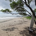 Playa Nosara, un très bon coin pour le surf.