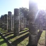 La salle des mille colonnes.